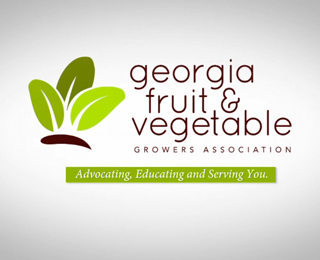 GFVGA Membership Promo